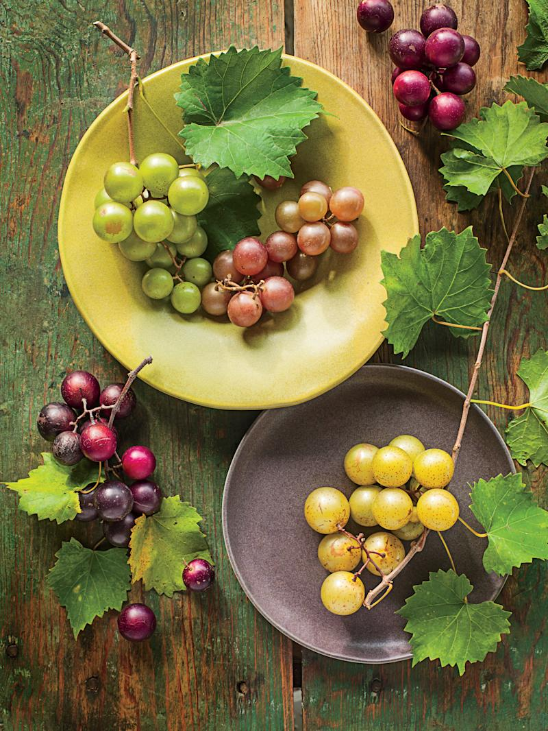 How To Grow Muscadines