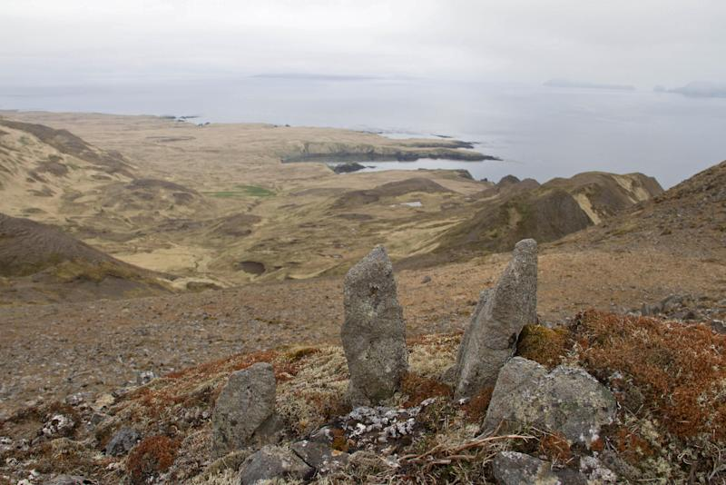 In this June 2013 photo provided by Island Conservation, is a view of the landscape on Hawadax Island, Alaska. Five years after an effort to eradicate rats from the remote Alaskan island, conservationists and federal wildlife officials are reporting success. They say the island, once known as Rat Island because of its infestation of rats, is now teeming with birds, whose songs and noises replace the silence that had been reported their earlier. Rat Island was officially renamed Hawadax Island, the original Aleut name for it, in 2012. (AP Photo/Island Conservation, Rory Stansbury)