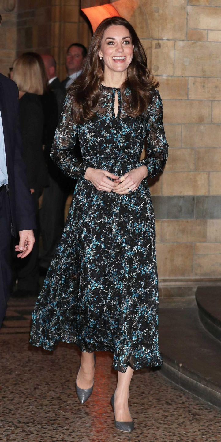 <p>The Duchess of Cambridge attends a tea party in honor of 'Dippy' The Dinosaur at London's Natural History Museum wearing a printed L.K. Bennett tea length dress and grey heels.</p>
