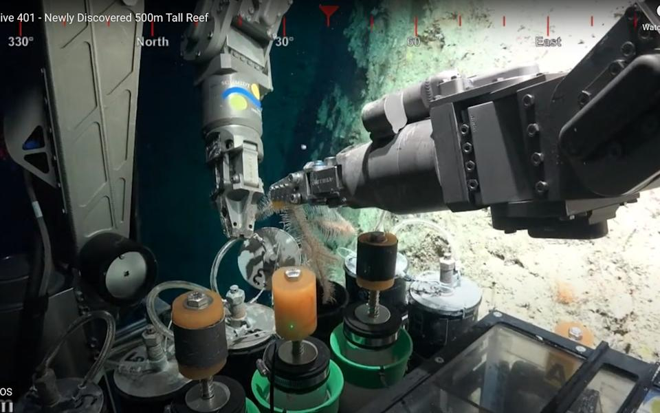 The robot is equipped with arms to take samples on its dive - Schmidt Ocean Institute