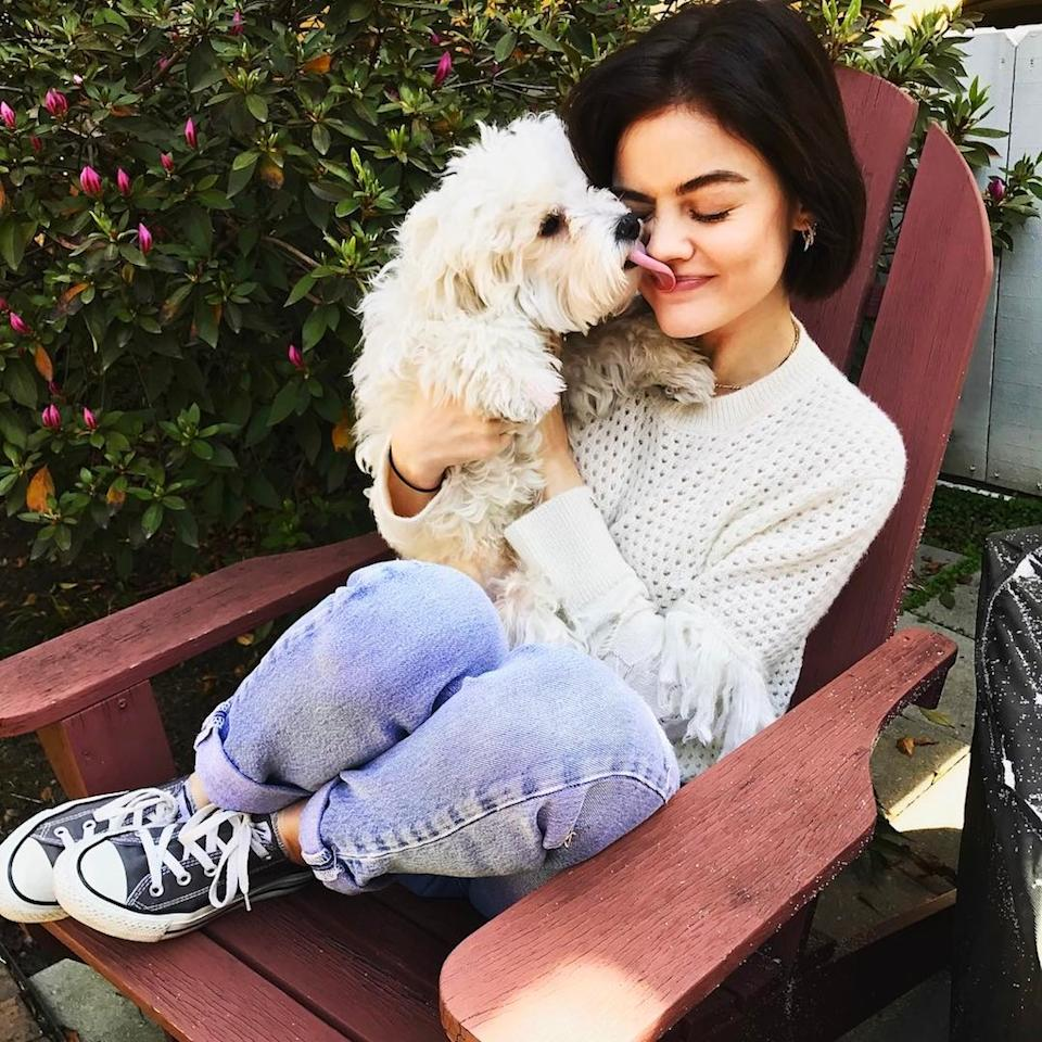 """<p>""""My little muffin!"""" the <i>Pretty Little Liars</i> star said about this snapshot of her beloved Elvis, adding that she was heartbroken to be leaving him for a few days. (Photo: <a rel=""""nofollow"""" href=""""https://www.instagram.com/p/BR8_3Shlm_i/"""">Instagram</a>) </p>"""