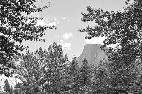 Ansel Adams' Yosemite has changed, but Half Dome remains. (Photo courtesy of Laura Wrede.)