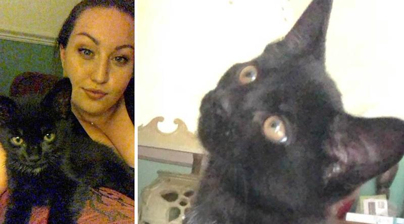 Sian Louise Parsons said her cat went missing on Wednesday. (SWNS)