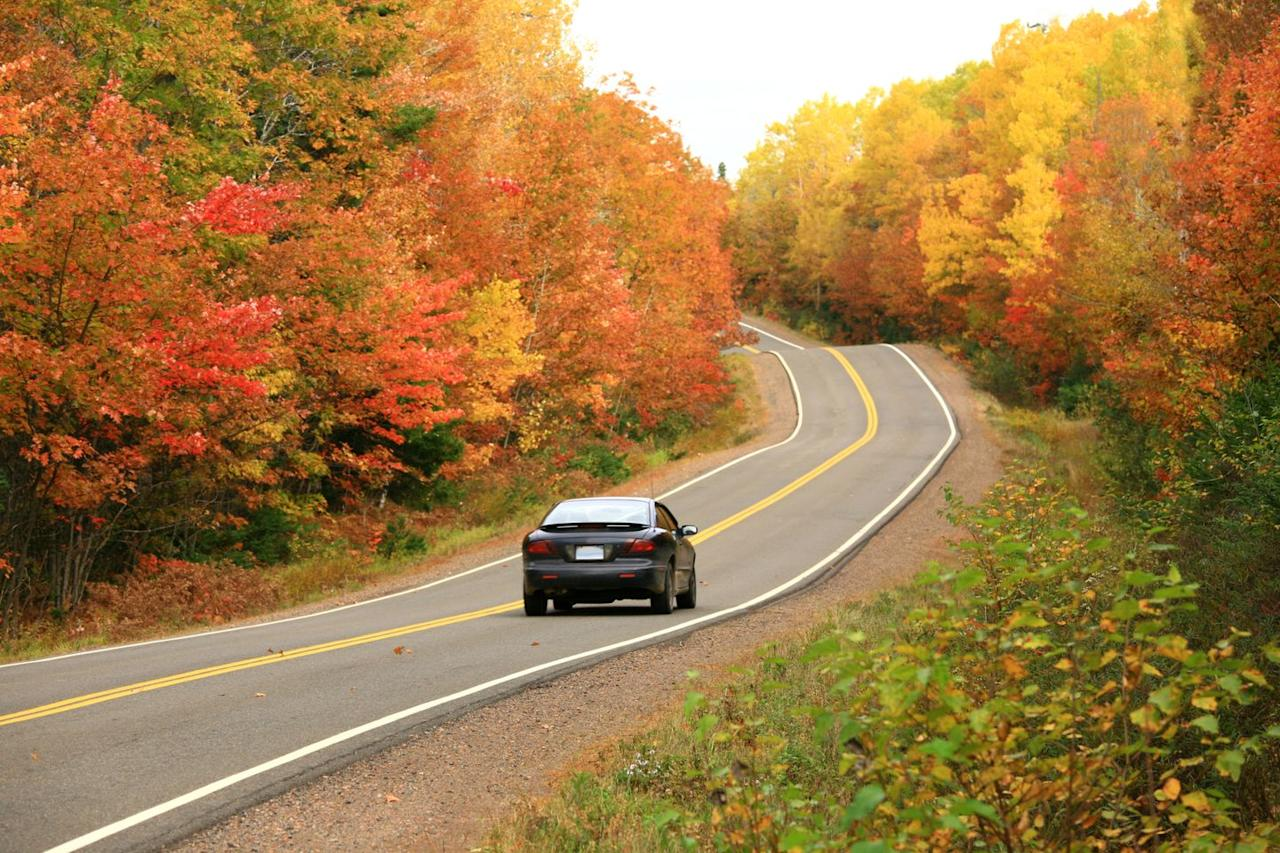 """<p>Sometimes the simplest things are the best: <a href=""""https://www.oprahmag.com/life/g27085708/road-trip-essentials/"""" target=""""_blank"""">a drive into the countryside</a> to see the leaves changing is sure to be both romantic and memorable.  """"Going on a date to see fall foliage creates space and time to talk—and because some people are more comfortable talking shoulder to shoulder, driving can often be the best part of the date,"""" says dating and relationship coach Marni Battista, Host of <a href=""""https://podcasts.apple.com/us/podcast/the-dating-den/id984598599"""">The Dating Den Podcast</a>.</p>"""