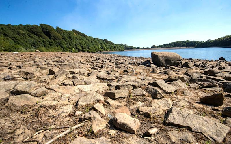 With reservoirs - such asAnglezarke in Lancashire, seen here on July 3 - under pressure from high demand and the lack of rainfall, Ofwat chief Rachel Fletcher urged households to recycle rainwater - PA