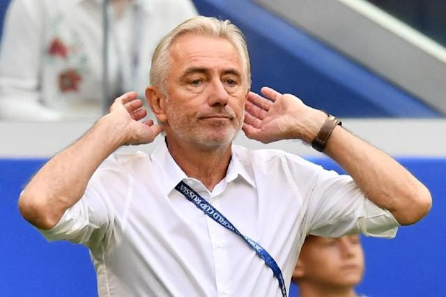 Bert van Marwijk believes Australia have been unlucky at the World Cup (AFP Photo/Fabrice COFFRINI)