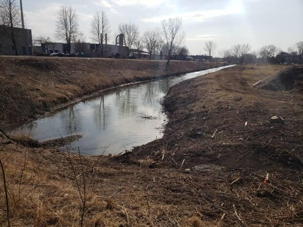 The city has cleared the banks of the Grand Marais Drain just east of Howard Avenue. (Tony Doucette/CBC - image credit)