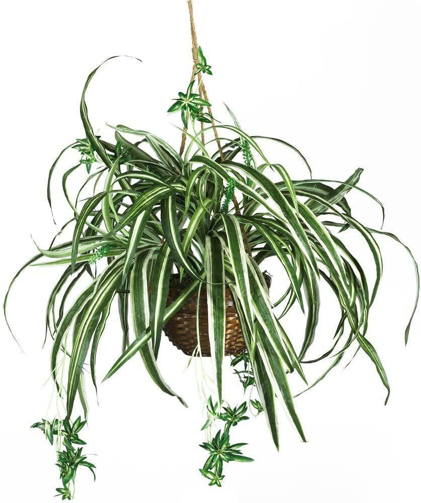Nearly Natural Spider Plant Hanging Basket