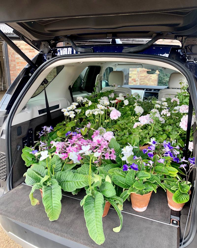 A quick trip to my in-laws' house to fill my car with plants, all grown from their exquisite greenhouses.