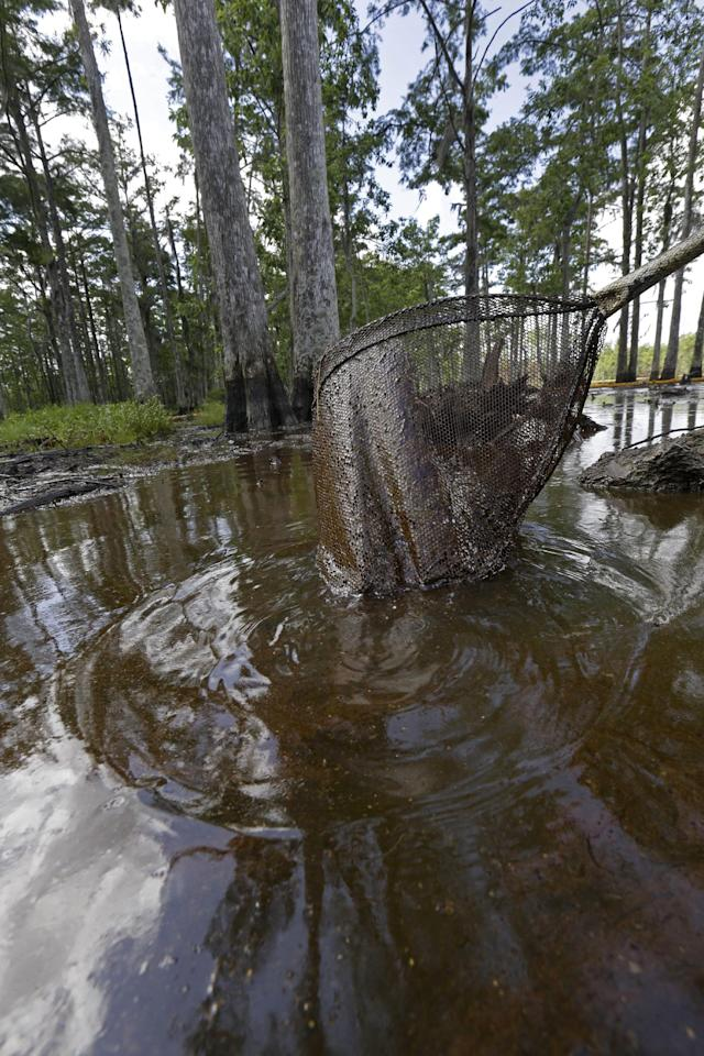 In this Thursday, June 27, 2013 photo, a contractor uses a net to keep floating debris away from a vacuum that is sucking up crude oil that has risen to the surface of an approximate 22-acre sinkhole in Bayou Corne, La. Neighbors in tiny Bayou Corne face a wrenching decision after a huge sinkhole opened up near their community: Do they stay put or should they pack up and move? The sinkhole resulted from a collapsed underground salt dome cavern about 40 miles south of Baton Rouge. After oil and natural gas came oozing up and acres of swampland liquefied into muck, the community's 350 residents were advised to evacuate. Texas Brine Co., the operator of the salt dome, is negotiating buyouts of residents who have not joined lawsuits against the company. (AP Photo/Gerald Herbert)