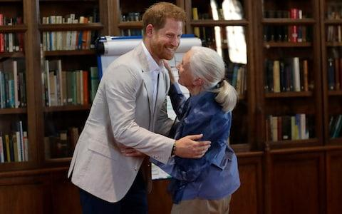 The Duke of Sussex hugs Dr Jane Goodall - Credit: Kirsty Wigglesworth/PA