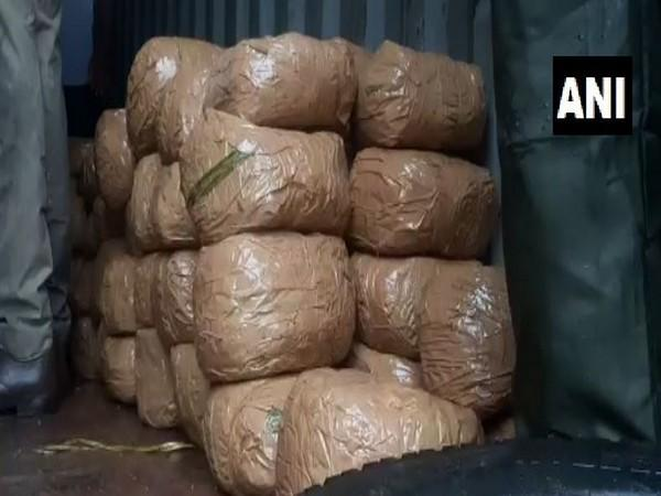 500 kgs of ganja was seized near Attingal in Thiruvananthapuram on Sunday. (Photo/ANI)