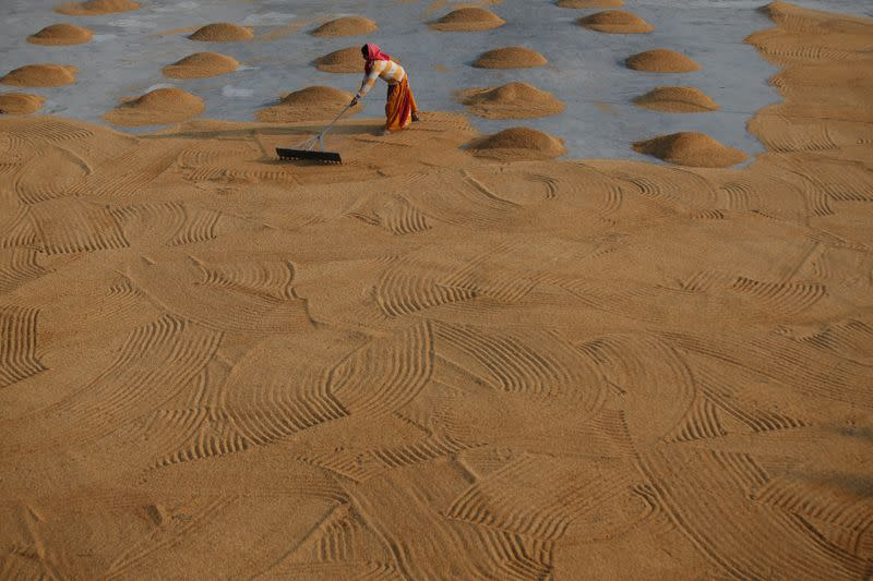 Asia Rice: India prices scale one-year peak, cyclone hits Bangladesh crop