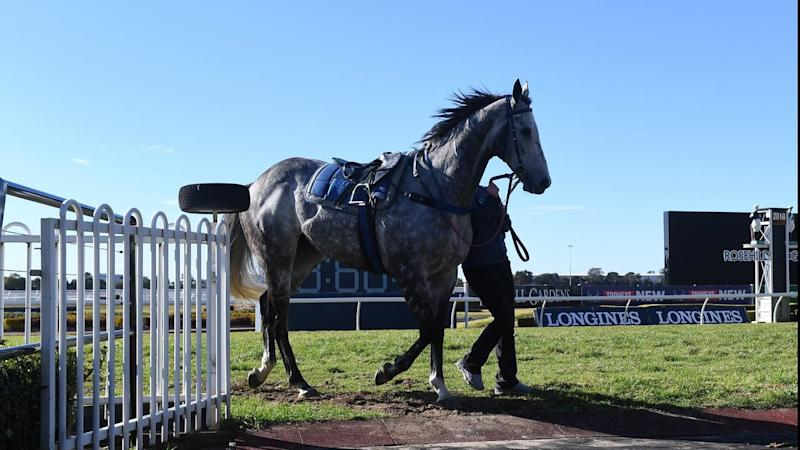 RACING ROSEHILL BARRIER TRIALS
