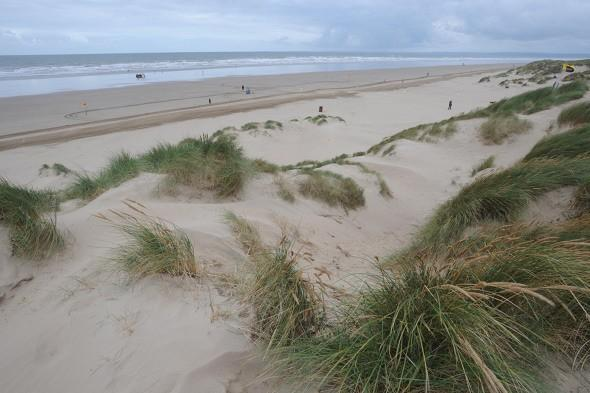 Have the summer floods ruined Welsh beaches?