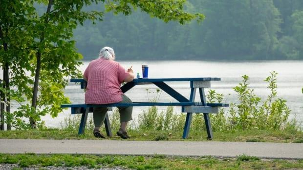 A person sits at picnic bench facing water in a park near the Ottawa River in July 2021. (Francis Ferland/CBC - image credit)