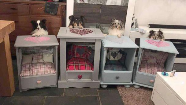 PHOTO: These aren't your typical dog beds. Behold the 'Sheltie Shacks.' (Facebook/Sheltie Shacks)