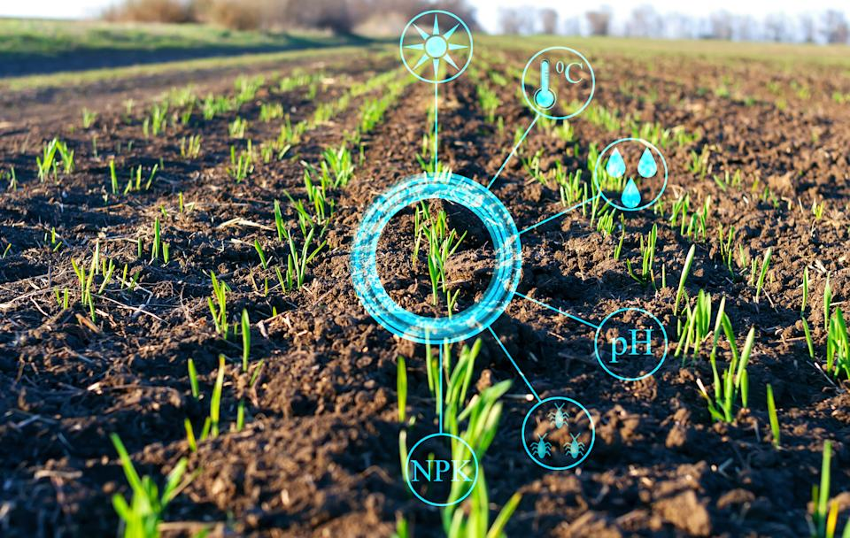 Conceptual presentation of the collection of important data and analysis of plant growth on the farm field to increase agricultural productivity