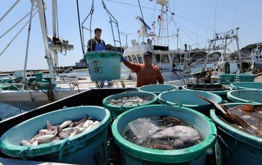 Fishermen unload their catch at the Hirakata fish market in Kitaibaraki, Ibaraki prefecture. For Japanese shoppers, food safety was taken for granted until the Fukushima crisis. Now many have lost faith in government guarantees and fear that radiation could have contaminated their diet
