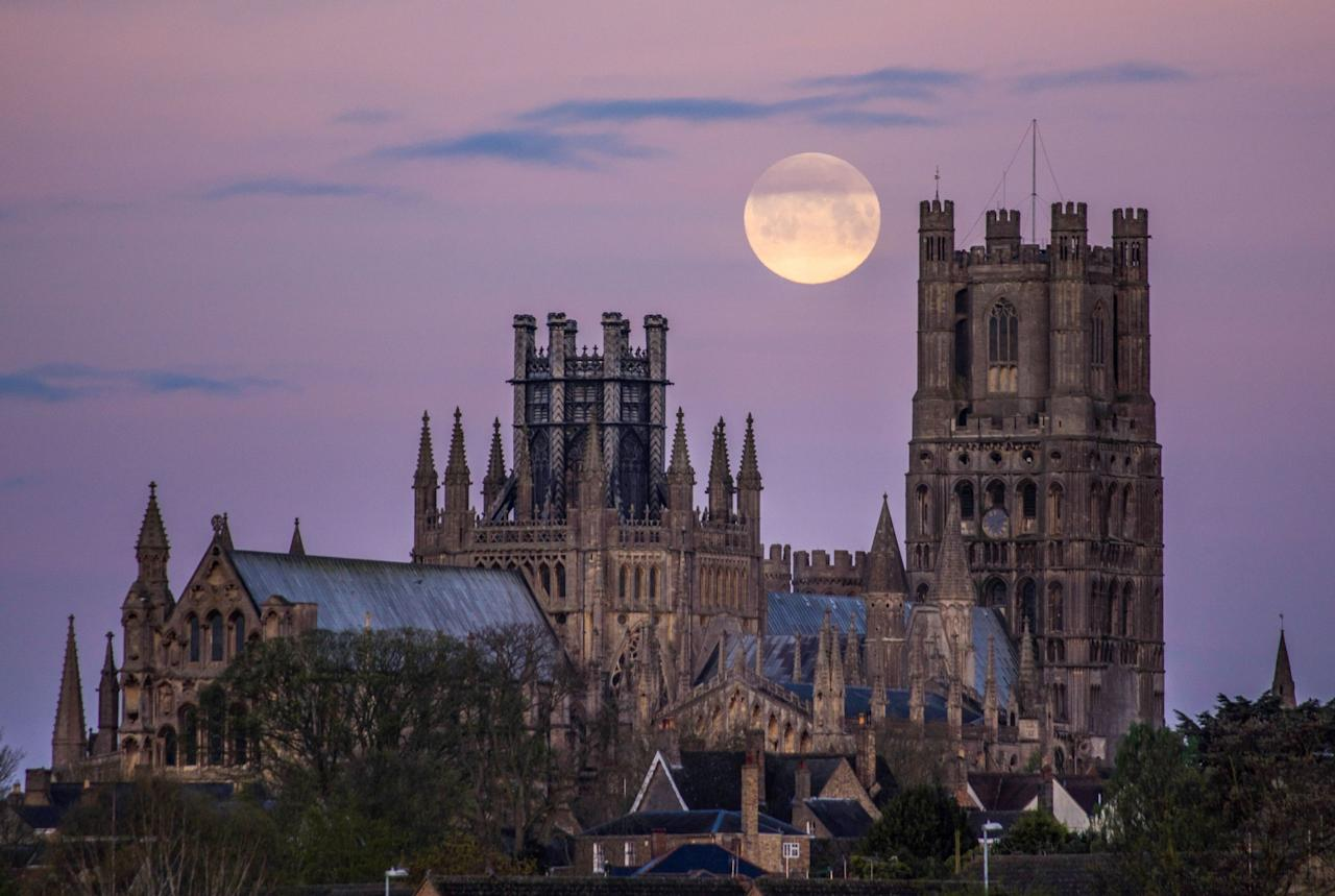 <p>A 'pink moon' glows in the sky over Ely Cathedral in Cambridgeshire. (Rex features) </p>