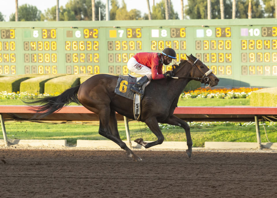 In a photo provided by Benoit Photo, Sensible Cat and jockey Juan Hernandez win the $100,000 Soviet Problem Stakes horse race Saturday, Dec. 12, 2020, at Los Alamitos Race Course in Cypress, Calif. (Benoit Photo via AP)