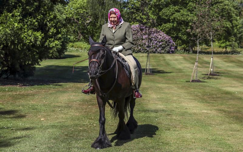 The Queen enjoys time with Balmoral Fern at Windsor Home Park - Steve Parsons