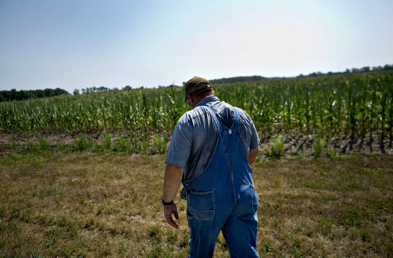 Farmer Andy Stoll walks near one of his drought damaged fields of corn in Idaville, Indiana. (Photographer: Daniel Acker/Bloomberg via Getty Images)