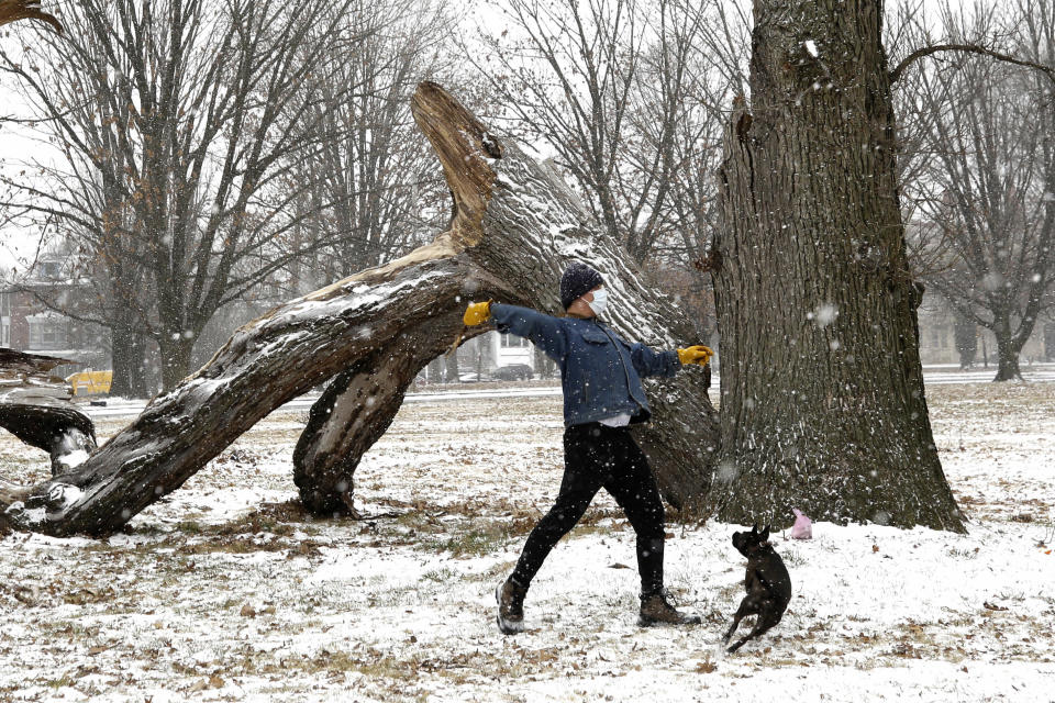 Clay Roronoa throws a stick as he plays with his dog Elluh in Fairmount Park, Sunday Jan. 31, 2021 in Philadelphia. After days of frigid temperatures, the Northeast is bracing for a whopper of a storm that could dump well over a foot of snow in many areas and create blizzard-like conditions. (AP Photo/Jacqueline Larma)