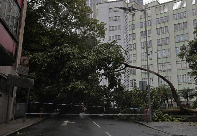 <p>A fallen tree caused by typhoon Hato lies at a street in Hong Kong, Wednesday, Aug. 23, 2017. (Photo: Vincent Yu/AP) </p>