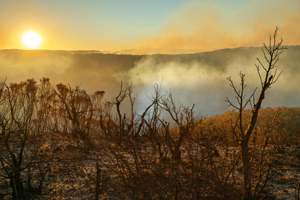 A burnt Blue Mountains landscape. The sun can be seen setting in the distance. The light is quite orange.