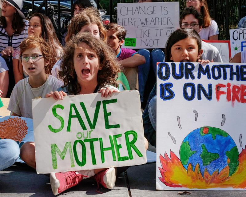"""Aaron Elavera Thomases (""""Save Our Mother""""), who has been striking since March 2019, at a Fridays for Future strike at City Hall, New York City, September 27, 2019."""