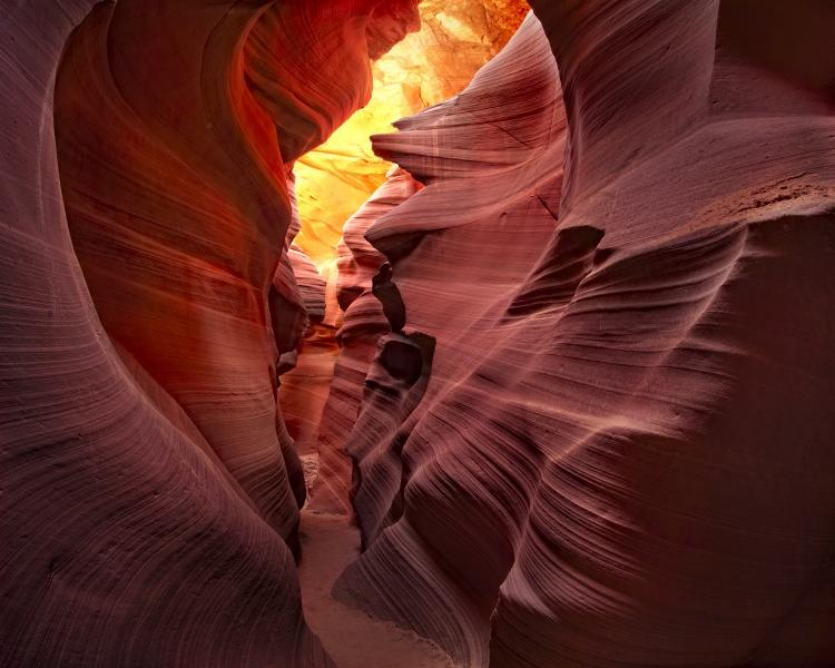Antelope Canyon, AZ - I love the way the light plays with the colors of this photo, and the way the sweeping sandstone leads you down the path in the middle. The middle even looks a bit like a heart, inviting you in. © World Wildlife Fund/Steve Perry