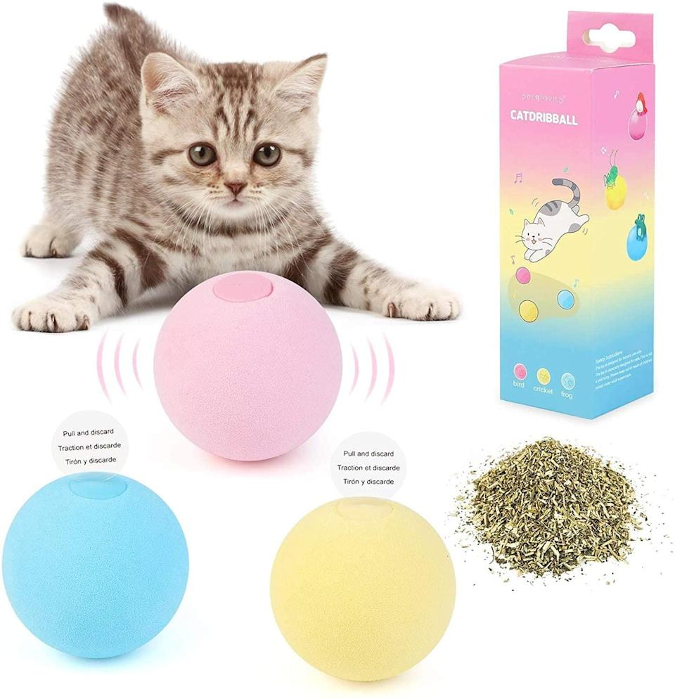 <p>Keep your cool cats and kittens entertained with the <span>Interactive Catnip Toy</span> ($25). It makes lifelike animal chirping sounds and can be refilled with catnip.</p>