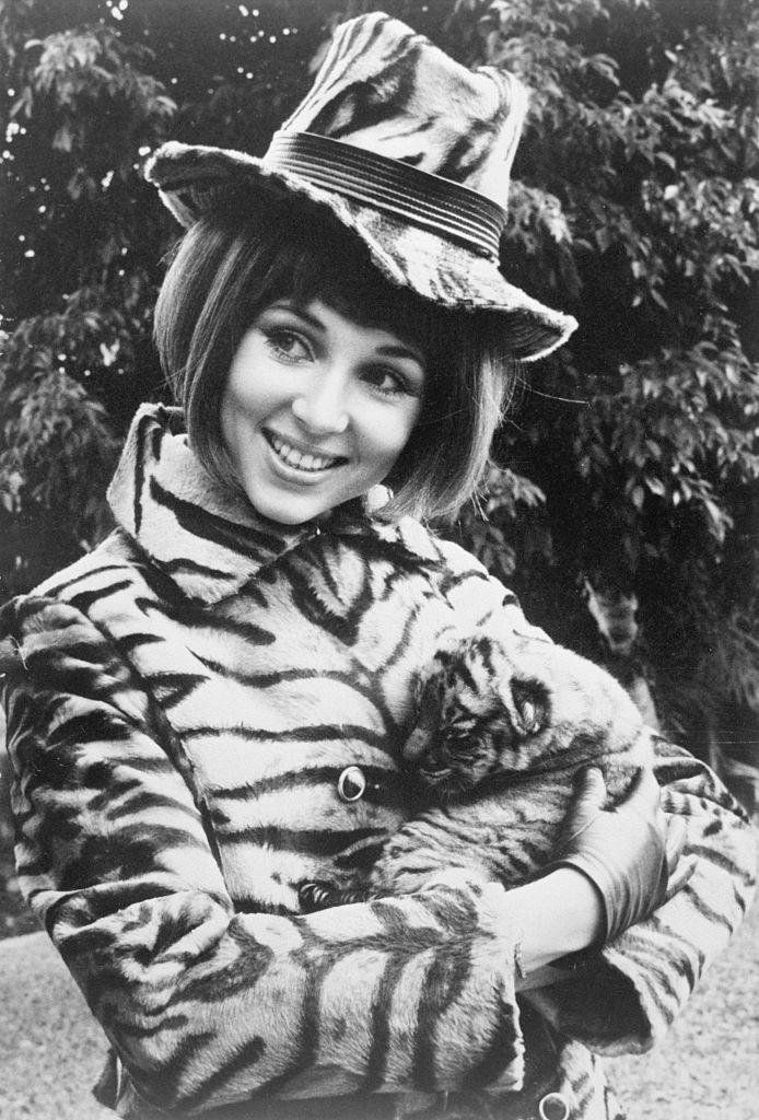"<p>National Airlines stewardess Janet Heinz models a synthetic tigerskin coat and hat in the airlines' new ""uniform that purrs."" </p>"