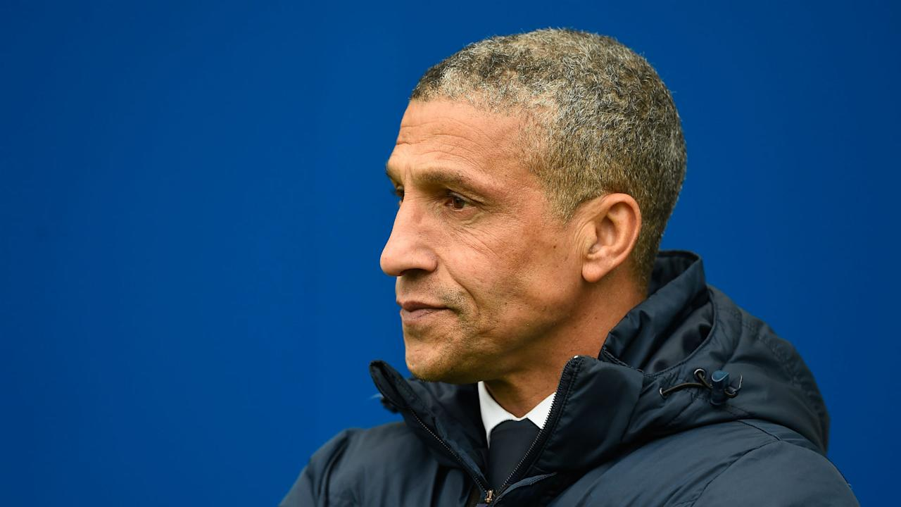 Chris Hughton's side will compete in the Premier League season next year - Goal takes a look at what we can expect from the Seagulls