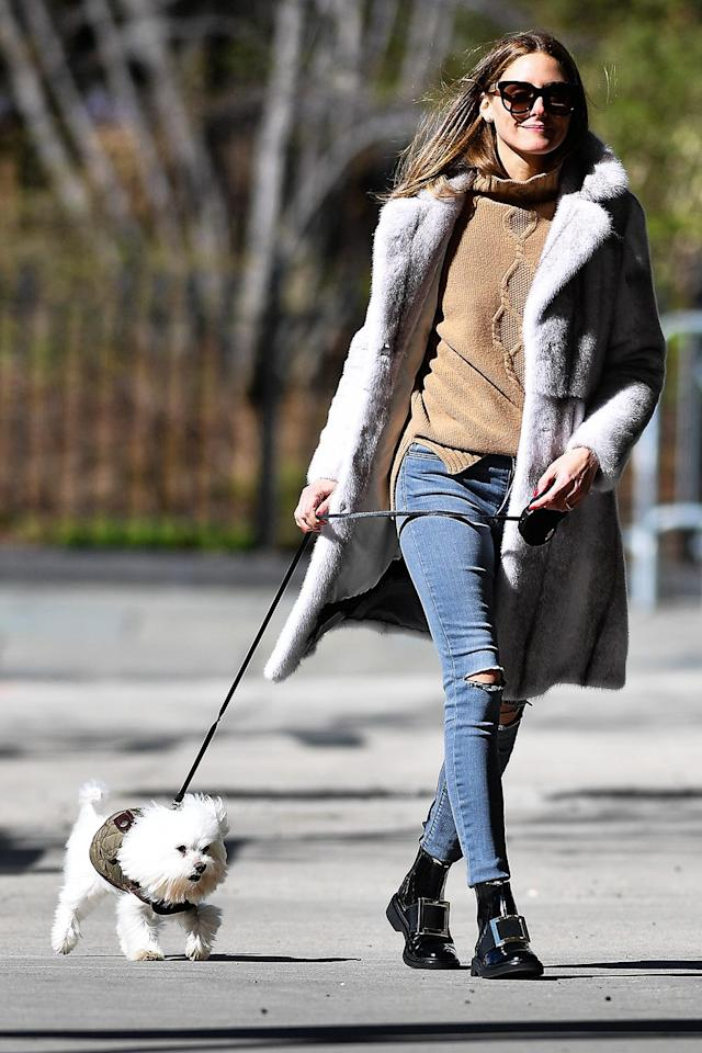<p>Olivia Palermo takes her pup for a stroll in Brooklyn on Saturday.</p>
