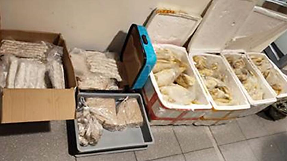 The items were detected in the luggage of a Chinese national during screening at Changi Airport Terminal 1 on 27 January. (PHOTO: SFA)