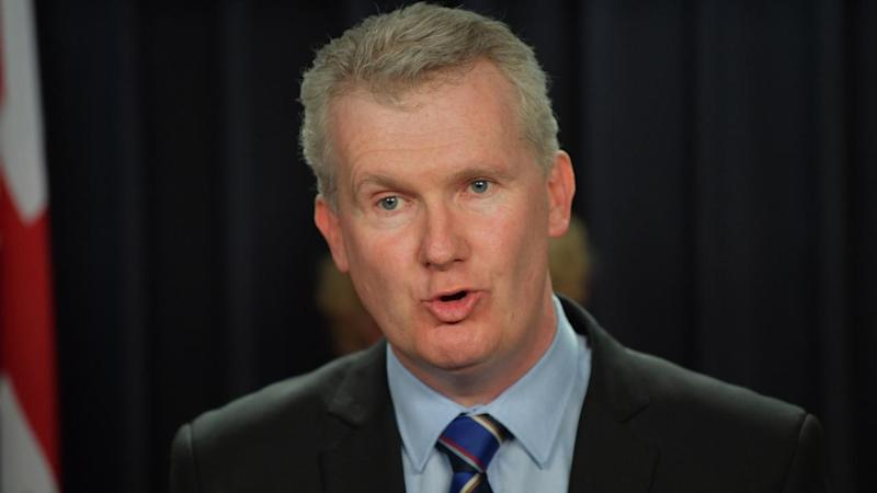 Labor's Tony Burke has criticised a NSW inquiry into the Murray Darling water theft claims.