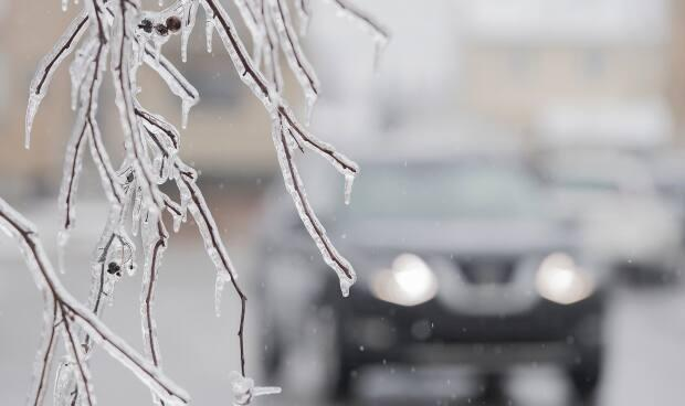Freezing rain is expected to taper off Saturday morning. (Graham Hughes/The Canadian Press - image credit)