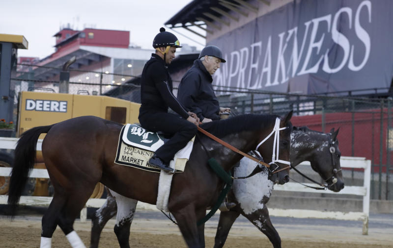Market King heads back to the barn after a light workout as the field is prepared for the running of the 144th Preakness horse race at Pimlico race track in Baltimore, Md., Saturday, May 18, 2019. (AP Photo/Steve Helber)