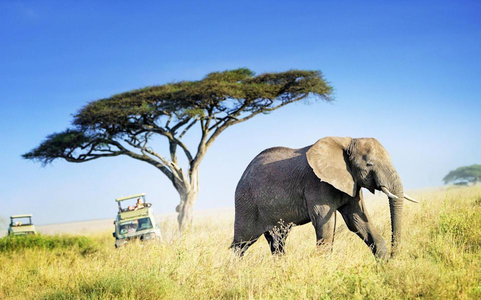 Africa is slowly opening up to tourists - Getty