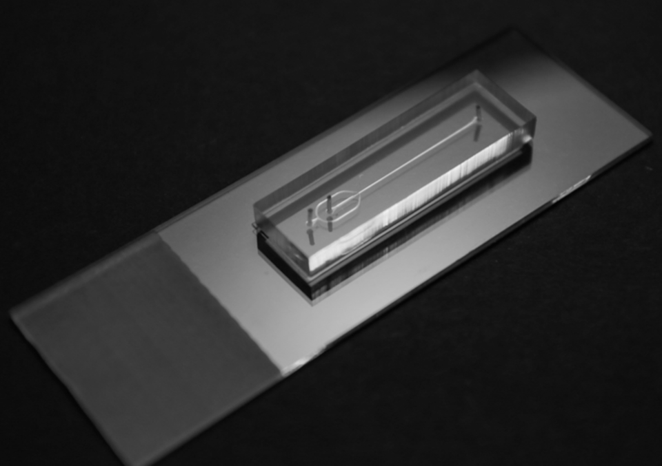 """<span class=""""caption"""">The pipes imprinted on microfluidic chips are about the size of a human hair, and in many ways are like miniaturizing a chemical manufacturing plant.</span> <span class=""""attribution""""><span class=""""source"""">(Katherine Elvira)</span>, <span class=""""license"""">Author provided</span></span>"""
