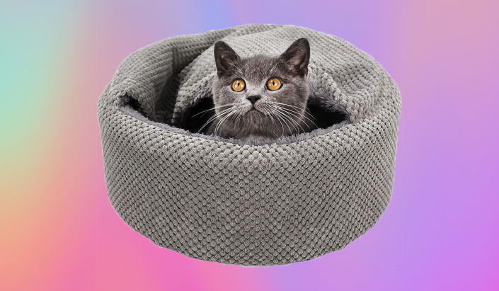 We swear, it's sheer coincidence that this cat is color-coded with its comfy lair. (Photo: Amazon)
