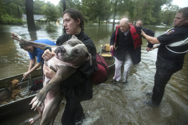 Jade McLain carries Thor out of a boat as she and Fred Stewart were rescued from their flooded neighborhood inundated by rains from Tropical Depression Imelda by Splendora Police officers on Thursday, Sept. 19, 2019, in Spendora, Texas. (Photo: Brett Coomer/Houston Chronicle via AP)