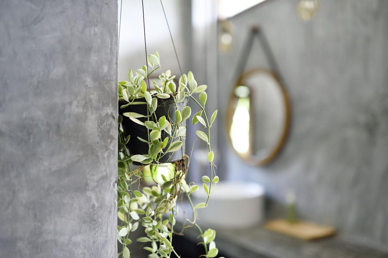 """<p>Bathroom plants are now considered an essential bathroom accessory. Why? While it's more than just an Instagram trend, aesthetically speaking, there's nothing more stylish than luscious green plants either placed on a shelf or stool by the bathtub or hanging from a shower.</p><p>Bathrooms are actually great for certain plants to thrive in thanks to its warm and humid atmosphere. From Aloe Vera to Boston Fern, there are plenty of bathroom plants that will elevate your space and keep it bright and cheery.</p><p>""""With just a few additions, your bathroom can be transformed into a rainforest-inspired haven of calm, with your houseplants working hard to keep your bathroom steam and bacteria free,"""" say the experts at online bathroom specialist, <a href=""""https://www.victorianplumbing.co.uk/"""" target=""""_blank"""">Victorian Plumbing</a>. </p><p>While trailing plants such as Ivy and Heartleaf Philodendron would look great on ledges, you could also place bathroom plants on a ladder shelf and hang them with some 'S' shaped hooks.</p><p>And don't forget to pick your plant pots carefully. They should be made from a porous material like terracotta and have a few drainage holes at the bottom. If your plant pot has a solid bottom, ensure it is placed in a pot with drainage holes first, then place on top of a dish or saucer inside the main pot. </p><p>Take a look at the best bathroom plants to consider buying below...</p>"""