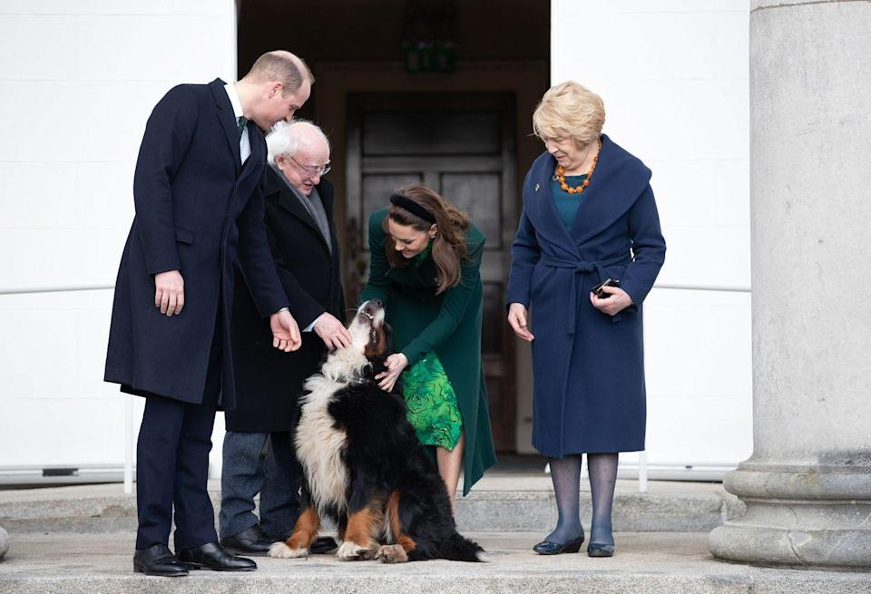 <p>Prince William and Kate Middleton met with the President of Ireland and his wife—and most importantly, their Bernese Mountain Dog Bród.</p>