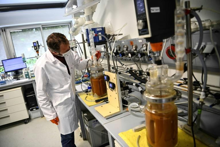 Glass jars containing pulverised electronics are injected with bacteria at a lab in western France by engineers aiming to extract rare earth metals
