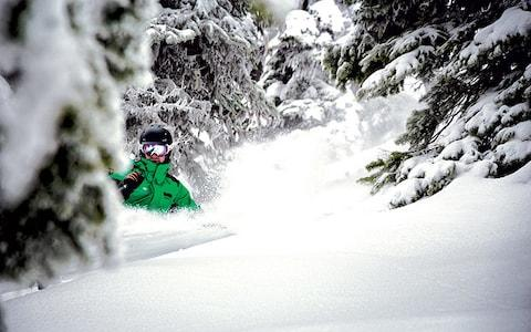 Revelstoke ski resort receives around 12m of powder each year