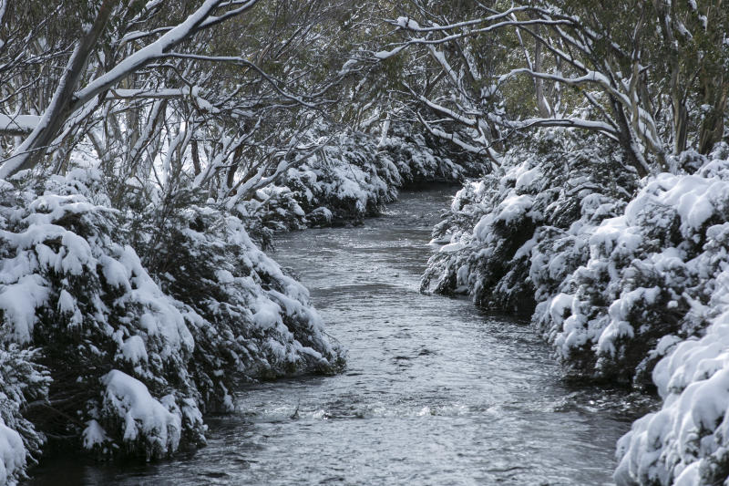 THREDBO, NSW - JUNE 25: A view of Thredbo River on June 25, 2016 in Thredbo Village, Australia. Snow has been forecast across Eastern Australia as a cold front continues to bring low temperatures, rain and potentially damaging winds. (Photo by Martin Ollman/Getty Images)