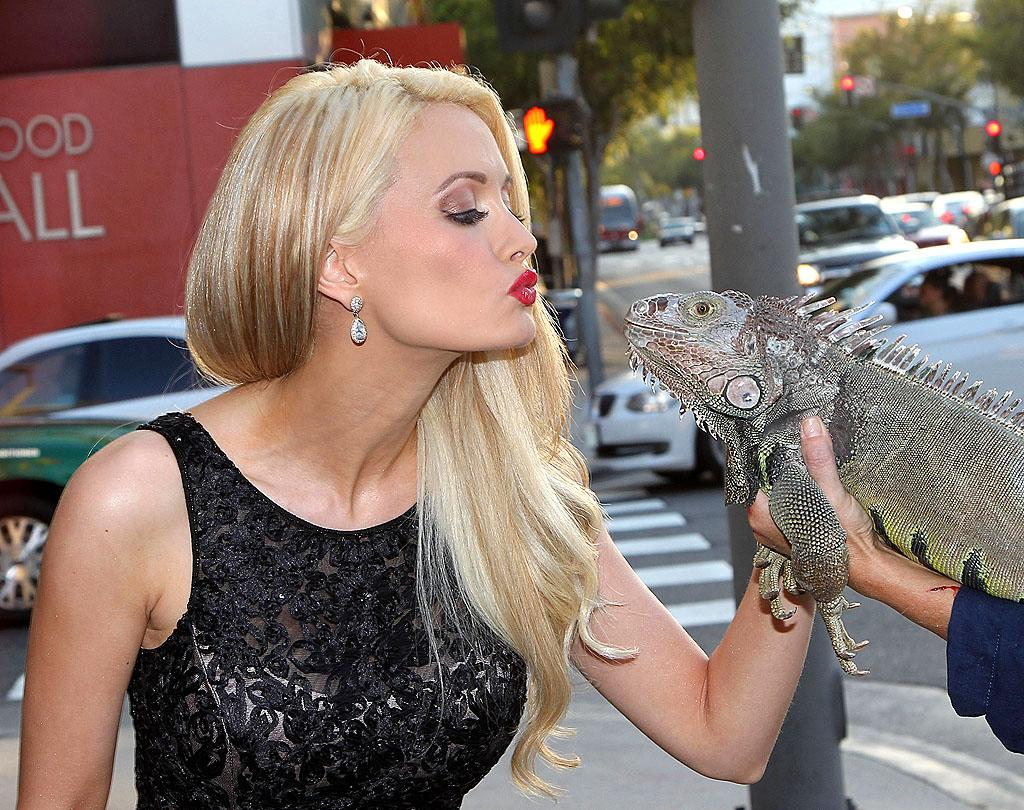 "After spending several years in a relationship with a man 54 years her senior who was also dating two of her pals at the same time, Playboy model Holly Madison has apparently moved on … to reptiles. The 33-year-old former reality star puckered up to a friendly iguana outside West Hollywood's Hamburger Mary's on Wednesday night before heading to the restaurant's legendary bingo night. And Holly may soon have someone else to kiss at home. ""I've started the adoption process... I really want to be a mommy,"" she recently told <i>In Touch</i> magazine. (8/1/2012)"